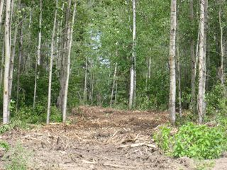 Photo 5: : Vacant Lot for sale (Rural St. Paul County)