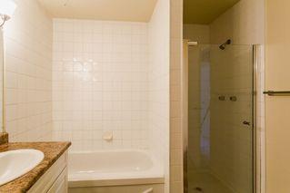 Photo 19: 115 11211 85 Street in Edmonton: Zone 05 Condo for sale : MLS®# E4182399