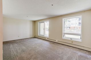 Photo 16: 115 11211 85 Street in Edmonton: Zone 05 Condo for sale : MLS®# E4182399