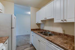 Photo 11: 115 11211 85 Street in Edmonton: Zone 05 Condo for sale : MLS®# E4182399