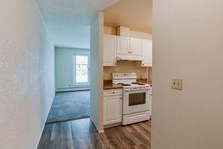Photo 9: 115 11211 85 Street in Edmonton: Zone 05 Condo for sale : MLS®# E4182399