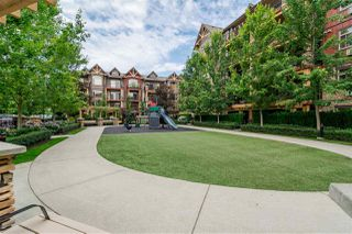 "Main Photo: 321 8288 207A Street in Langley: Willoughby Heights Condo for sale in ""Yorkson Creek"" : MLS®# R2529591"