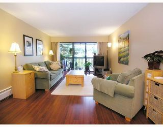 Photo 1: 309 2777 Oak Street in Vancouver: Fairview VW Condo for sale (Vancouver West)
