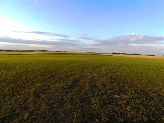 Main Photo: 562TWP 262 RR: Rural Sturgeon County Rural Land/Vacant Lot for sale : MLS®# E4185517