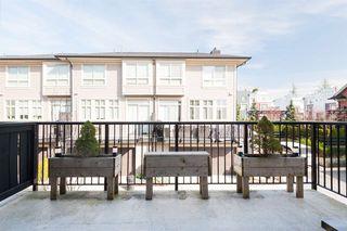 Photo 17: 26 16261 23A Avenue in Surrey: Grandview Surrey Townhouse for sale (South Surrey White Rock)  : MLS®# R2447456