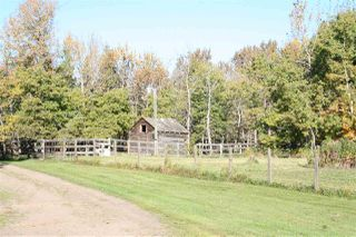 Photo 5: RR 220 And HWY 18: Rural Thorhild County House for sale : MLS®# E4215375