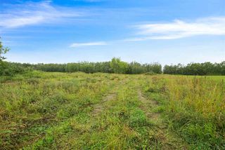 Photo 1: 175 52550 Range Road 222: Rural Strathcona County Rural Land/Vacant Lot for sale : MLS®# E4215471