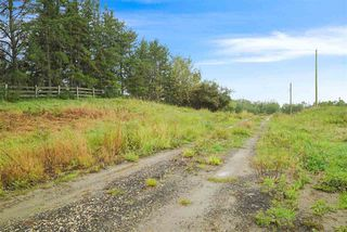 Photo 7: 175 52550 Range Road 222: Rural Strathcona County Rural Land/Vacant Lot for sale : MLS®# E4215471