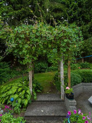 Photo 27: 1755 ORKNEY Place in North Vancouver: Northlands House for sale : MLS®# R2504108