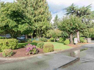 """Photo 34: 7 32286 7 Avenue in Mission: Mission BC Townhouse for sale in """"Luther Place"""" : MLS®# R2508452"""