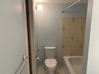 Photo 10: 107 42 ALPINE Place: St. Albert Condo for sale : MLS®# E4221505