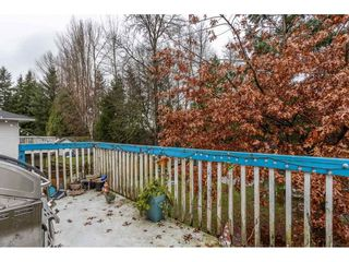 Photo 10: 18923 124 Avenue in Pitt Meadows: Central Meadows House for sale : MLS®# R2526554