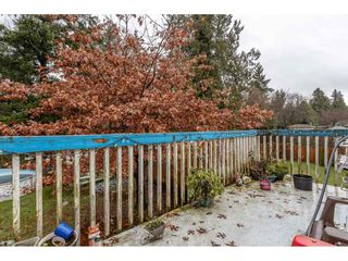 Photo 9: 18923 124 Avenue in Pitt Meadows: Central Meadows House for sale : MLS®# R2526554