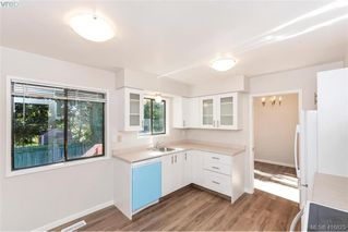 Photo 12: 1717 Kenmore Road in VICTORIA: SE Gordon Head Single Family Detached for sale (Saanich East)  : MLS®# 416825