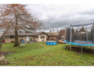 Photo 18: 32546 PANDORA Avenue in Abbotsford: Abbotsford West House for sale : MLS®# R2430395