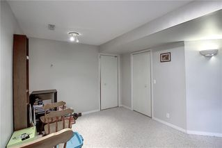 Photo 31: 47 INVERNESS Grove SE in Calgary: McKenzie Towne Detached for sale : MLS®# C4301288