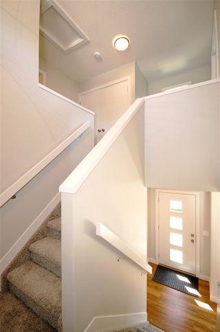 Photo 10: 9327 93 Street NW in Edmonton: Zone 18 House Triplex for sale : MLS®# E4202555