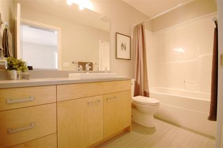 Photo 13: 9327 93 Street NW in Edmonton: Zone 18 House Triplex for sale : MLS®# E4202555