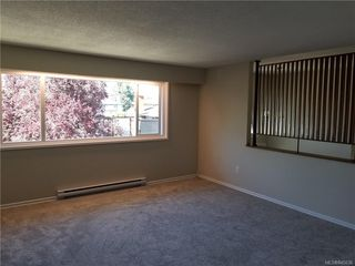 Photo 4: 1801 Hartwood Pl in Saanich: SE Lambrick Park Single Family Detached for sale (Saanich East)  : MLS®# 845036