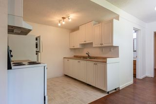 Photo 5: 2170 15th Ave in : CR Campbellton House for sale (Campbell River)  : MLS®# 850918