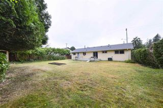 Photo 19: 12308 227TH Street in Maple Ridge: East Central House for sale : MLS®# R2487331