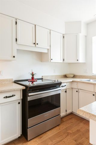 Photo 26: 905 Oliphant Ave in : Vi Fairfield West Row/Townhouse for sale (Victoria)  : MLS®# 857217