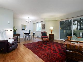 Photo 6: 209 1012 COLLINSON St in : Vi Fairfield West Condo for sale (Victoria)  : MLS®# 859466