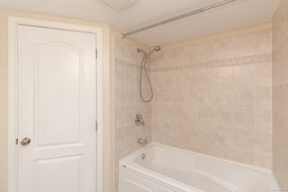 Photo 14: 644 Baxter Ave in : SW Glanford House for sale (Saanich West)  : MLS®# 861355