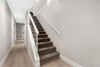 Photo 12: 4 2816 Shelbourne Street in VICTORIA: Vi Jubilee Row/Townhouse for sale (Victoria)  : MLS®# 420103
