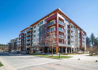 Main Photo: 310 3581 ROSS Drive in Vancouver: University VW Condo for sale (Vancouver West)  : MLS®# R2507072