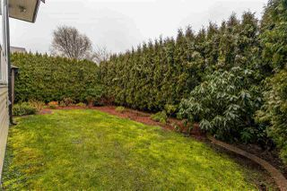 Photo 36: 21067 83A Avenue in Langley: Willoughby Heights House for sale : MLS®# R2459560