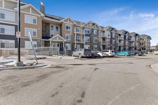 Photo 20: 5113 155 SKYVIEW RANCH Way NE in Calgary: Skyview Ranch Apartment for sale : MLS®# A1016749