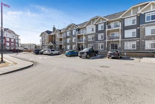 Photo 21: 5113 155 SKYVIEW RANCH Way NE in Calgary: Skyview Ranch Apartment for sale : MLS®# A1016749
