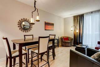 Photo 6: 206 817 15 Avenue SW in Calgary: Beltline Apartment for sale : MLS®# A1043773