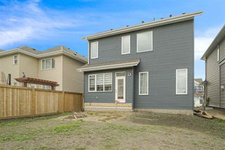 Photo 27: 8830 24 Avenue in Edmonton: Zone 53 House for sale : MLS®# E4165328