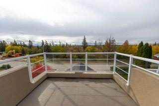 Photo 20: 7821 SASKATCHEWAN Drive in Edmonton: Zone 15 House for sale : MLS®# E4175439