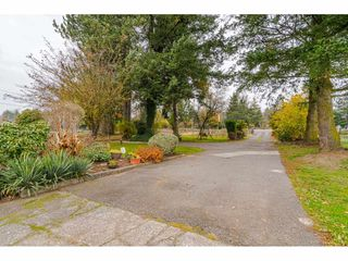 Photo 15: 25060 16 Avenue in Langley: Otter District House for sale : MLS®# R2416110