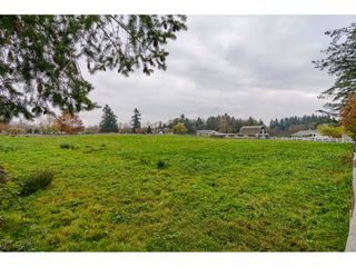 Photo 20: 25060 16 Avenue in Langley: Otter District House for sale : MLS®# R2416110
