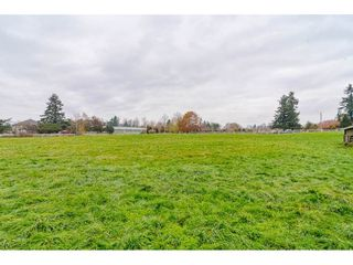 Photo 19: 25060 16 Avenue in Langley: Otter District House for sale : MLS®# R2416110