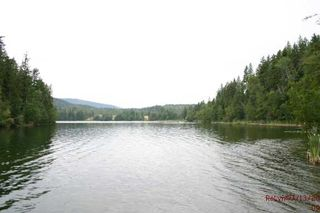 Photo 4: 665 Park Road SE in Enderby: Waterfront with home Residential Detached for sale (Salmon Arm)  : MLS®# 9220355