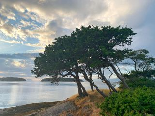 Photo 25:  in SATURNINA ISLAND: Isl Small Islands (Nanaimo Area) Land for sale (Islands)  : MLS®# 839567