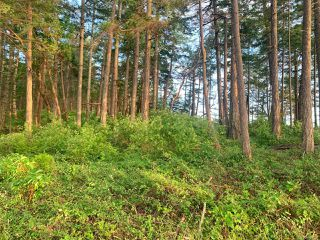 Photo 13:  in SATURNINA ISLAND: Isl Small Islands (Nanaimo Area) Land for sale (Islands)  : MLS®# 839567