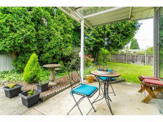"Photo 20: 15845 95 Avenue in Surrey: Fleetwood Tynehead House for sale in ""Fleetwood Belair Estates"" : MLS®# R2468767"