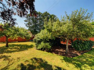 Photo 19: 221 kamloops Ave in : SW Tillicum House for sale (Saanich West)  : MLS®# 850412