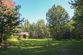 Photo 39: 2501 52 Avenue: Rural Wetaskiwin County House for sale : MLS®# E4210544
