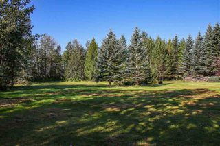 Photo 38: 2501 52 Avenue: Rural Wetaskiwin County House for sale : MLS®# E4210544