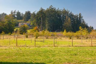 Photo 31: 1765 McTavish Rd in : NS Airport House for sale (North Saanich)  : MLS®# 857310