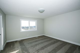 Photo 22:  in Edmonton: Zone 57 House for sale : MLS®# E4168306
