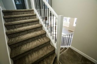 Photo 21:  in Edmonton: Zone 57 House for sale : MLS®# E4168306