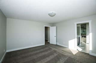 Photo 23:  in Edmonton: Zone 57 House for sale : MLS®# E4168306